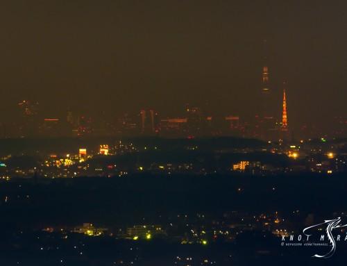 ปฏิบัติการแบกยักษ์ไปถ่ายคู่หูโตเกียวแลนมาร์ค